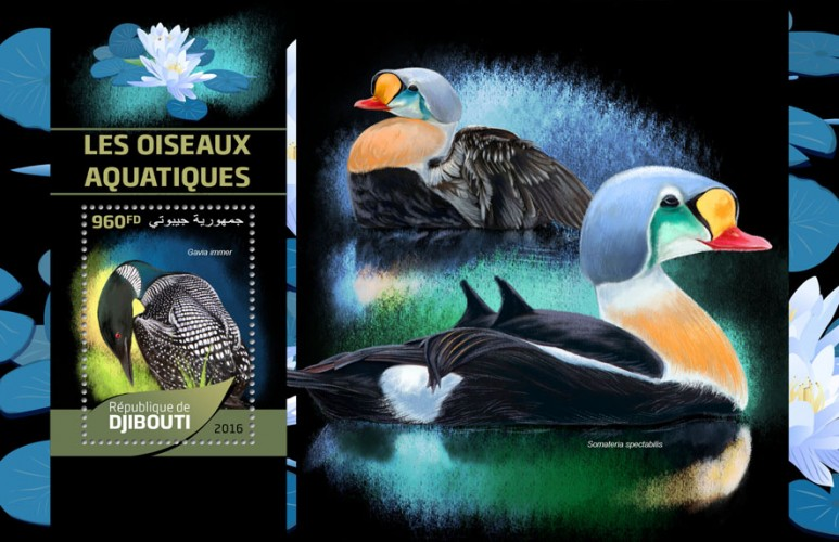 Water birds (Gavia immer) | Stamps of DJIBOUTI