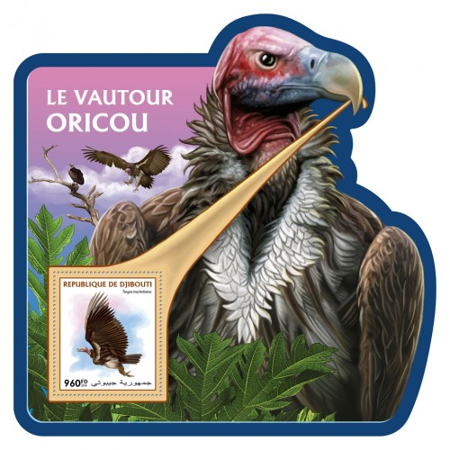 Lappet-faced vulture (Torgos tracheliotos) | Stamps of DJIBOUTI