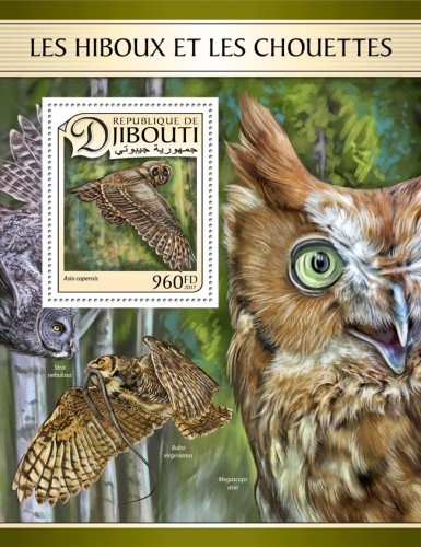 Owls (Asio capensis) | Stamps of DJIBOUTI