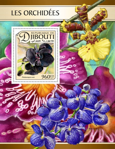 Orchids (Black Phalaenopsis) | Stamps of DJIBOUTI