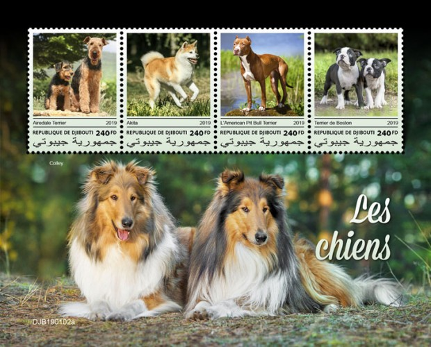 Dogs (Airedale Terrier; Akita; American Pit Bull Terrier; Boston Terrier) Background info: Collie dog | Stamps of DJIBOUTI