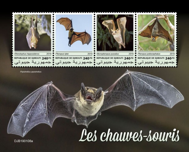 Bats (Rhinolophus hipposideros; Pteropus lylei; Micropteropus pussilus; Pteropus poliocephalus) Background info: Pipistrellus pipistrellus | Stamps of DJIBOUTI