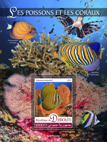 Fishes and corals (Zebrasoma desjardinii, Annella mollis) Background info: Pomacanthus annularis, Pygoplites diacanthus | Stamps of DJIBOUTI