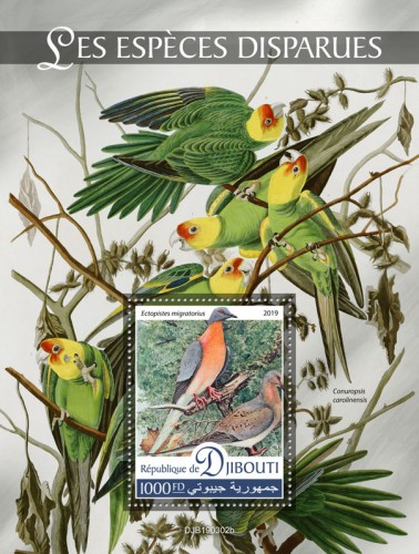 Extinct species (Ectopistes migratorius) Background info: Conuropsis carolinensis | Stamps of DJIBOUTI