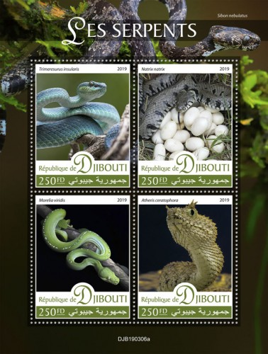 Snakes (Trimeresurus insularis; Natrix natrix; Morelia viridis; Atheris ceratophora) Background info: Sibon nebulatus | Stamps of DJIBOUTI