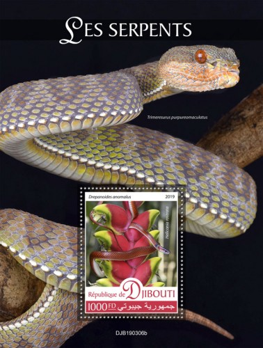 Snakes (Drepanoides anomalus, Heliconia rostrata) Background info: Trimeresurus purpureomaculatus | Stamps of DJIBOUTI