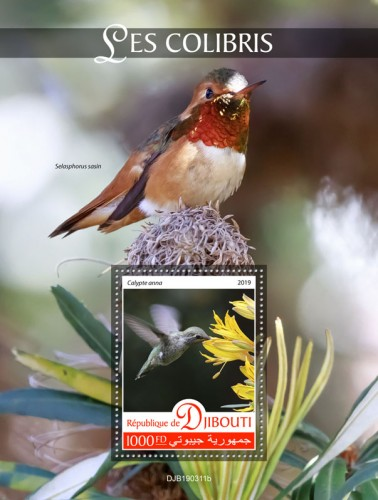 Hummingbirds (Calypte anna) Background info: Selasphorus sasin | Stamps of DJIBOUTI
