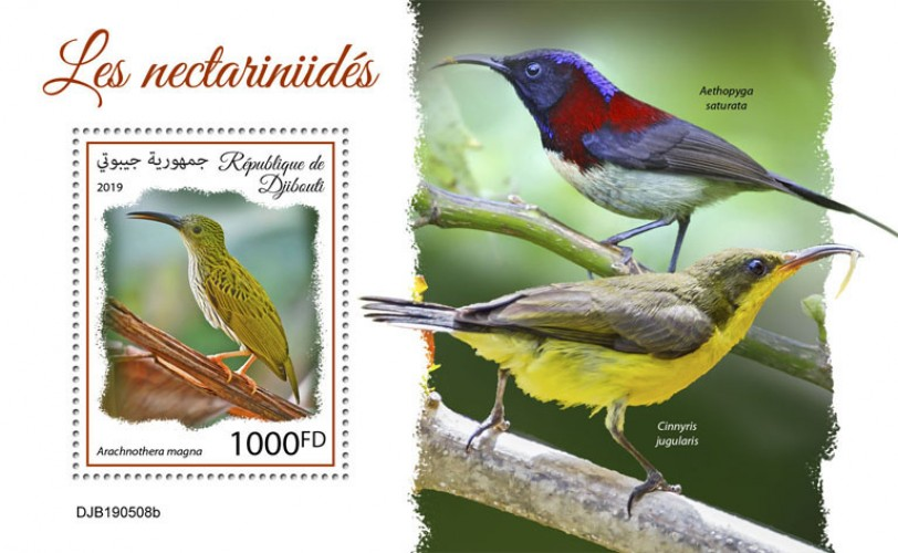 Sunbirds (Arachnothera magna) Background info: Aethopyga saturata, Cinnyris jugularis | Stamps of DJIBOUTI