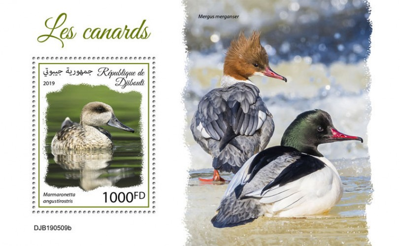 Ducks (Marmaronetta angustirostris) Background info: Mergus merganser | Stamps of DJIBOUTI